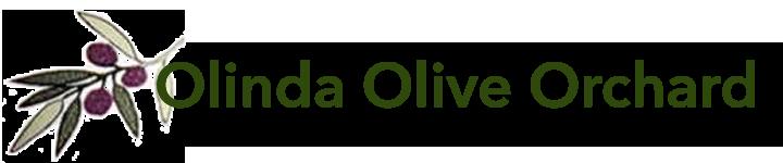 Olinda Olive Orchard